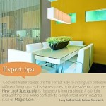 Earles Paint Place Feature Walls
